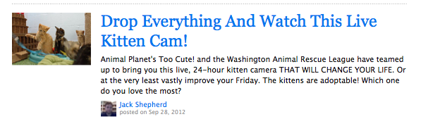 BuzzFeed's headlines are making us extremely confused about our priorities.