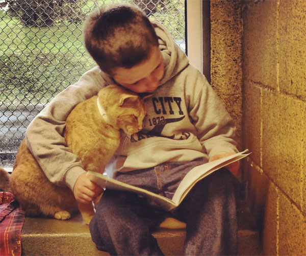 Here's a bunch of little kids reading books to shelter cats.