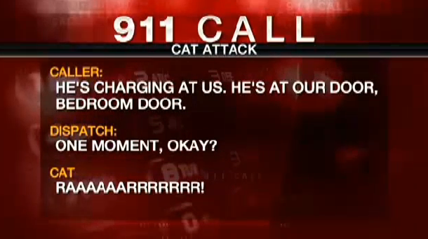 Family calls 911 when their angry, 22-pound housecat holds them hostage in the bathroom.