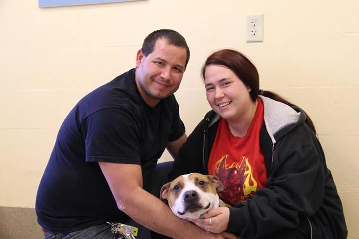 A couple who lost their dog in Hurricane Sandy decided to adopt again. The first dog they met looked very familiar.