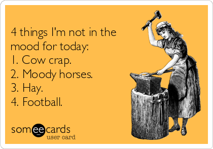 4 things I'm not in the mood for today: 1. Cow crap. 2. Moody horses. 3. Hay. 4. Football.