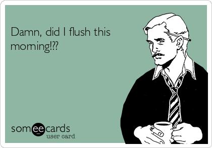 Damn, did I flush this morning!??