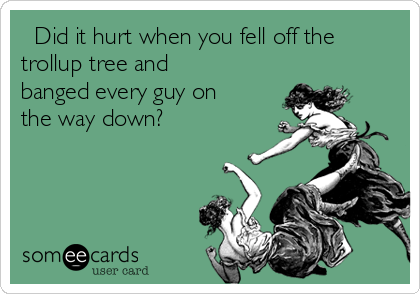 Did it hurt when you fell off the trollup tree and banged every guy on the way down?
