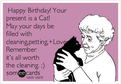 Happy Birthday Your Present Is A Cat May Days Be Filled With Cleaning