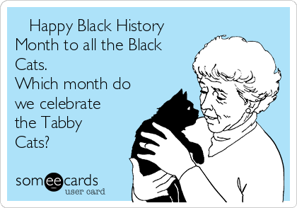 Happy Black History Month to all the Black Cats.  Which month do we celebrate the Tabby Cats?