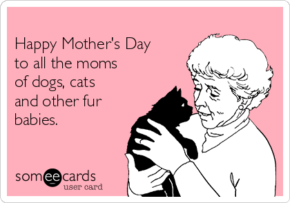Happy Mother's Day   to all the moms   of dogs, cats  and other fur babies.