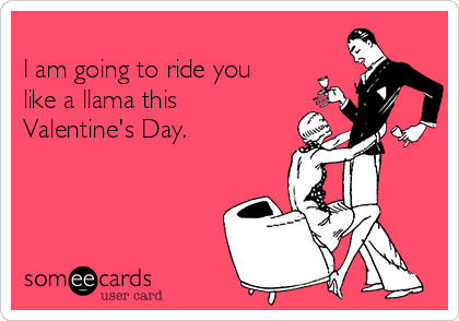 I Am Going To Ride You Like A Llama This Valentine S Day