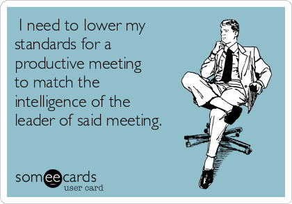 I need to lower my standards for a productive meeting to match the intelligence of the leader of said meeting.