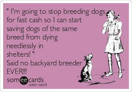 """ I'm going to stop breeding dogs for fast cash so I can start saving dogs of the same breed from dying needlessly in shelters! "" Said no backyard breeder EVER!!!"