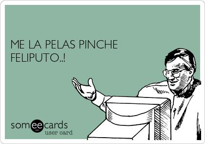ME LA PELAS PINCHE FELIPUTO..!