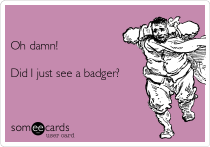 Oh damn!  Did I just see a badger?