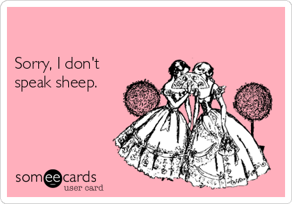 Sorry, I don't speak sheep.