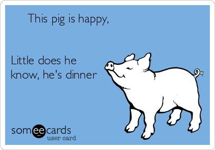 This pig is happy,   Little does he know, he's dinner