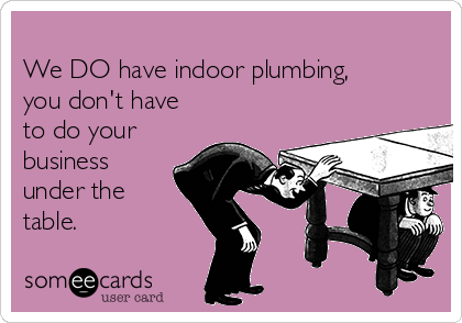 We DO have indoor plumbing, you don't have to do your business under the table.