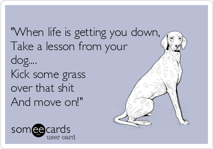 """When life is getting you down, Take a lesson from your dog.... Kick some grass over that shit  And move on!"""