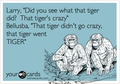 """Larry, """"Did you see what that tiger did?  That tiger's crazy""""Bellusba, """"That tiger didn't go crazy, that tiger wentTIGER"""""""