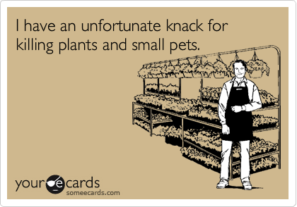 I have an unfortunate knack for killing plants and small pets.