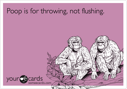 Poop is for throwing, not flushing.