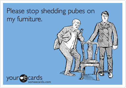 Please stop shedding pubes on my furniture.
