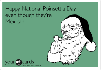 Happy National Poinsettia Day even though they'reMexican