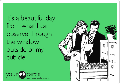 It's a beautiful dayfrom what I canobserve throughthe windowoutside of mycubicle.