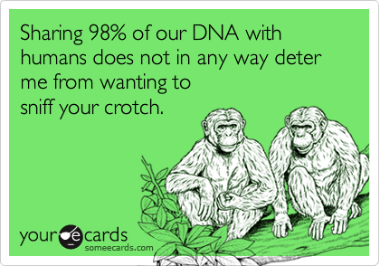 Sharing 98% of our DNA with humans does not in any way deter me from wanting tosniff your crotch.