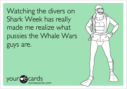 Watching the divers on  Shark Week has really  made me realize what pussies the Whale Wars guys are.