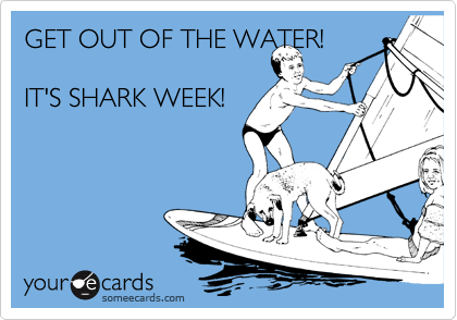 GET OUT OF THE WATER!   IT'S SHARK WEEK!