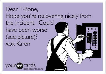 Dear T-Bone, Hope you're recovering nicely from the incident.  Could have been worse %28see picture%29? xox Karen