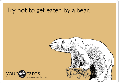 Try not to get eaten by a bear.