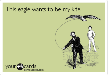 This eagle wants to be my kite.