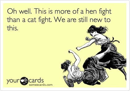 Oh well. This is more of a hen fight than a cat fight. We are still new to this.