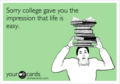 Sorry college gave you the impression that life is easy.