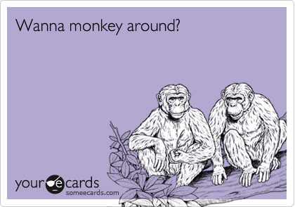 Wanna monkey around?