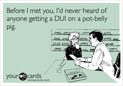 Before I met you, I'd never heard of anyone getting a DUI on a pot-belly pig.