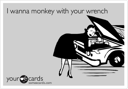 I wanna monkey with your wrench