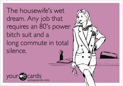 The housewife's wet dream. Any job that  requires an 80's power bitch suit and a long commute in total silence.