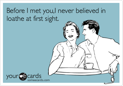 Before I met you,I never believed in loathe at first sight.