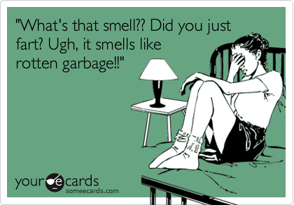 """""""What's that smell?? Did you just fart? Ugh, it smells like rotten garbage!!"""""""