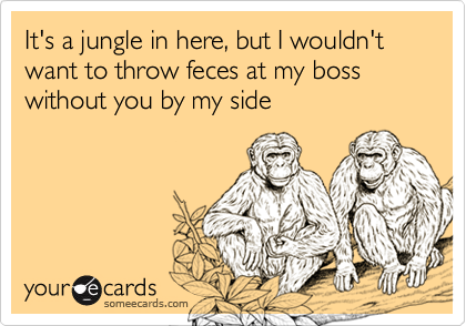 It's a jungle in here, but I wouldn't want to throw feces at my boss without you by my side