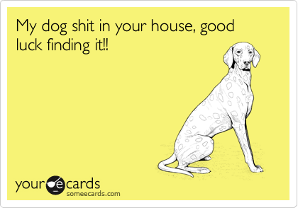 My dog shit in your house, good luck finding it!!