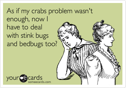 As if my crabs problem wasn't enough, now I have to deal with stink bugs and bedbugs too?