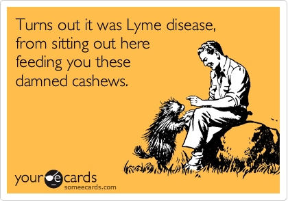 Turns out it was Lyme disease,  from sitting out here feeding you these damned cashews.