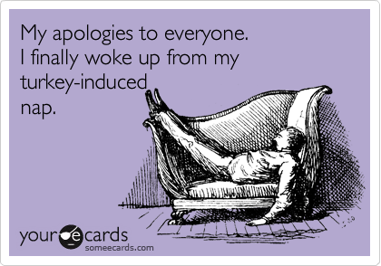My apologies to everyone. I finally woke up from my turkey-induced nap.