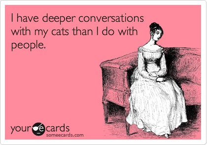I have deeper conversations with my cats than I do with people.