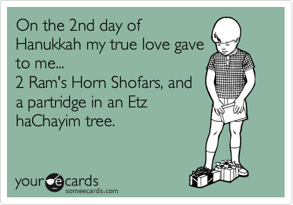 On the 2nd day of Hanukkah my true love gave to me...   2 Ram's Horn Shofars, and a partridge in an Etz haChayim tree.