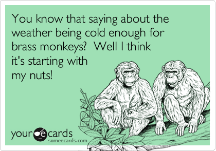 You know that saying about the weather being cold enough for brass monkeys?  Well I think  it's starting with  my nuts!