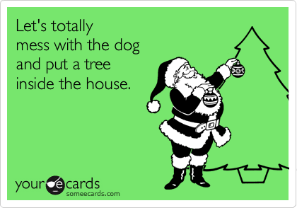 Let's totally mess with the dog and put a tree inside the house.