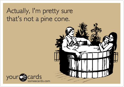 Actually, I'm pretty sure  that's not a pine cone.
