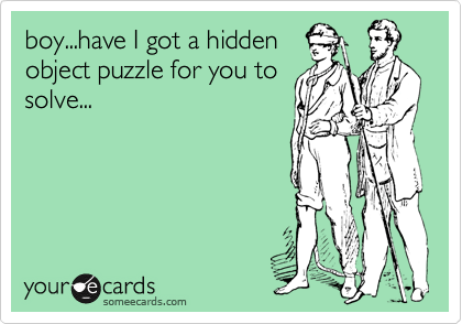 boy...have I got a hidden object puzzle for you to solve...